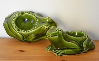 grenouille (5)