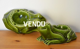 grenouille (5)